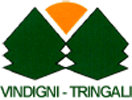 http://www.vindignitringali.it